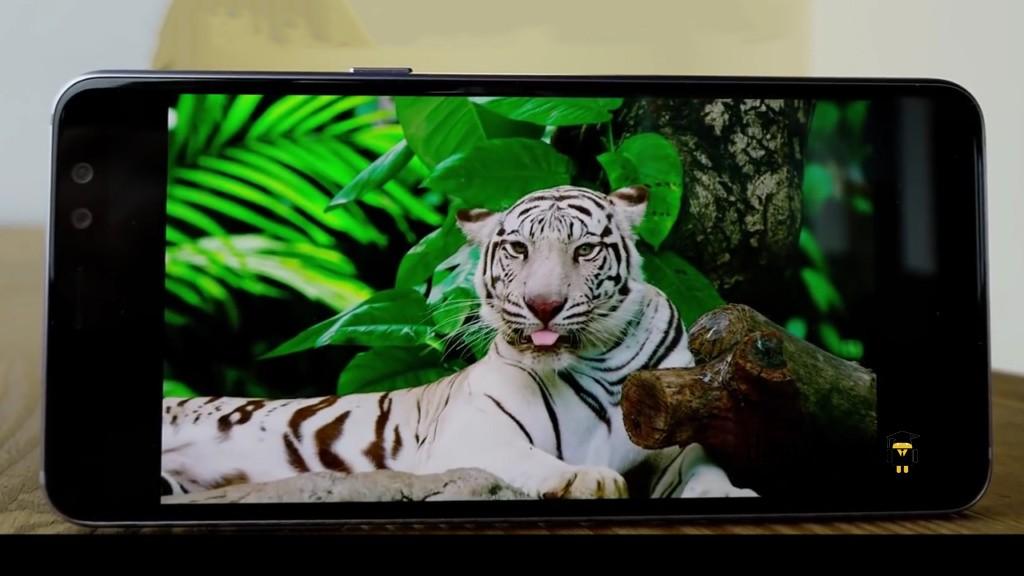 Samsung Galaxy A8 (2018) Display