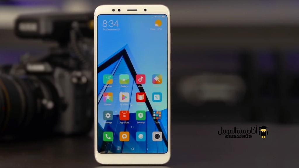 Xiaomi Redmi 5 Plus Display